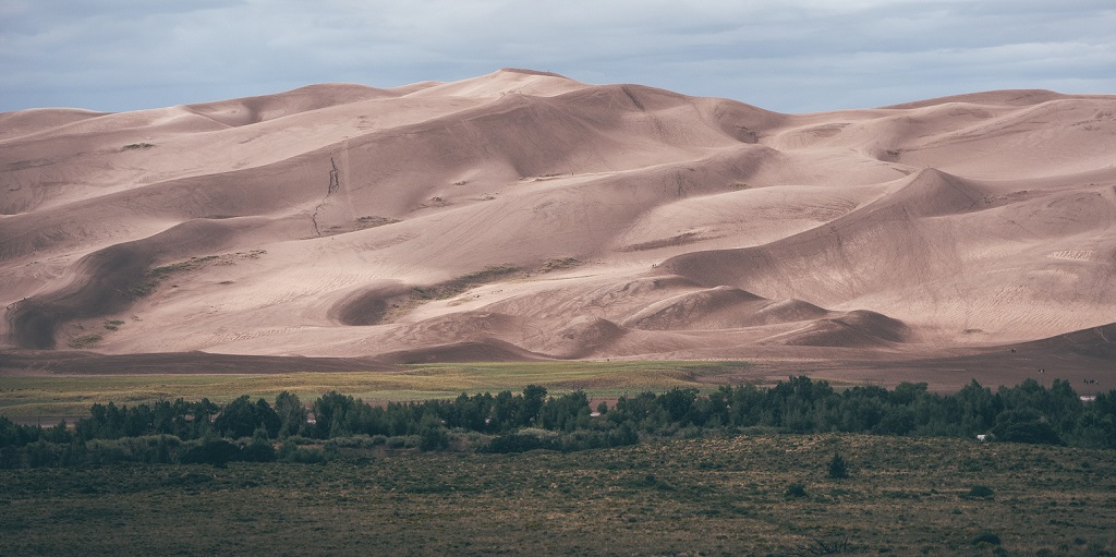 view of a landscape with a forest and a desert, source: benny-jackson-133285-unsplash